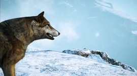 Video: Far Cry 4 - Welcome to Kyrat - Midlands and Himalayas