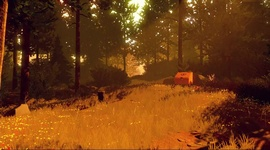 Video: Firewatch - PAX trailer