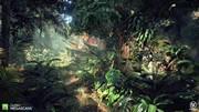 Megascans - Jungle