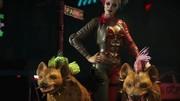 Injustice 2 - Harley Quinn a Deadshot