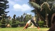 Faily pri joge