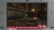 Fire Emblem Echoes: Shadows of Valentia – Fledgling Warriors Pack