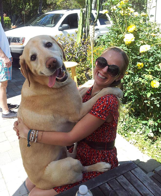 Keď si veľky pes myslí, že je stále šteniatko