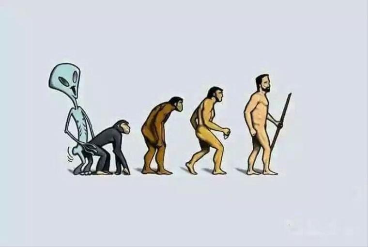 Teória evolúcie vyriešená?