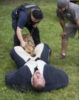 Keď ste ako figurína na tréning psa a chytí vás tam kde to nečakáte....