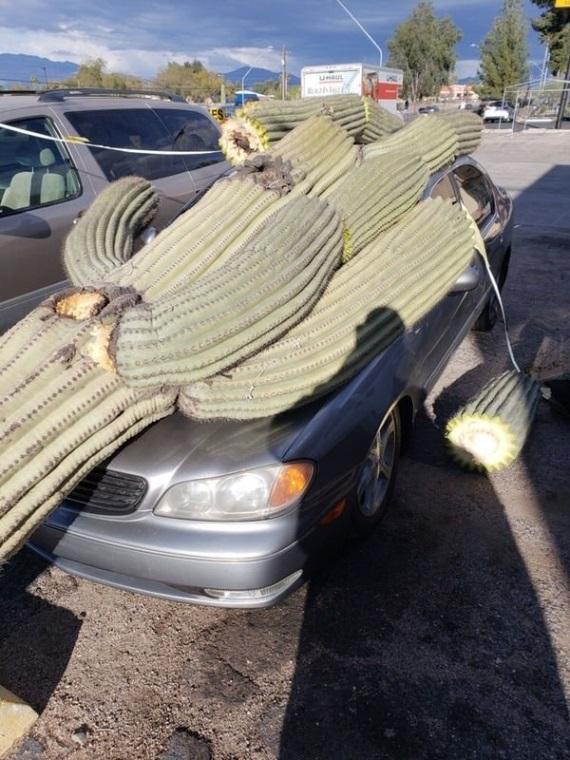 Nehody sa stávajú