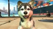 Kinectimals Unleashed prid�va do hry psov, je free 2 play