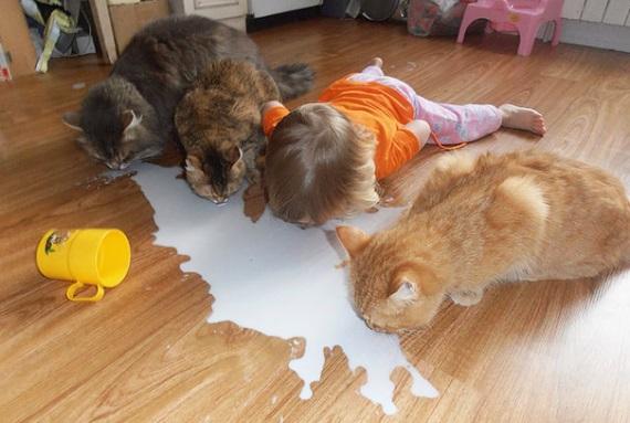 Deti a zvierat�