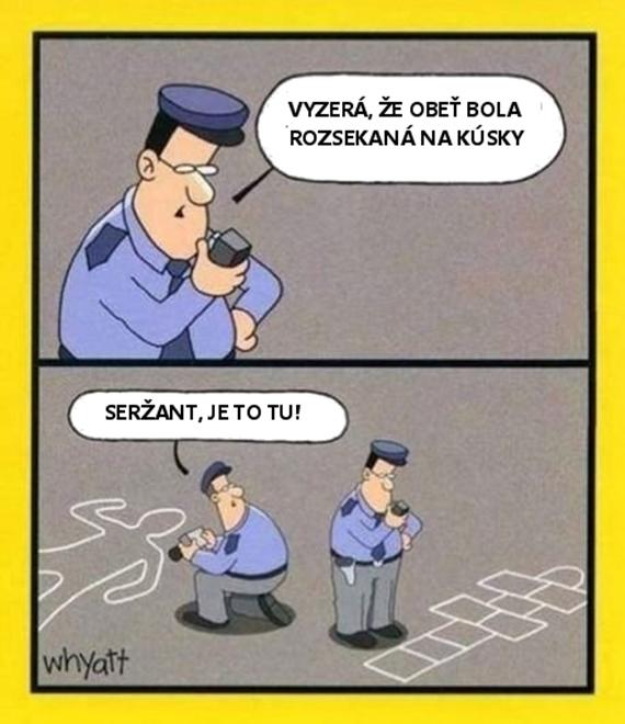 Polícia vyšetruje vraždu