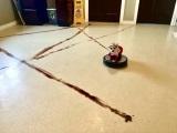 Pes a Roomba