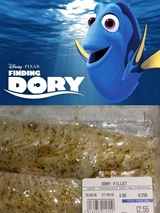 Ten pocit ke� n�jdete Dory