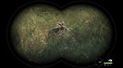 Lovecká sezóna theHunter: Call of the Wild bude s českými titulkami