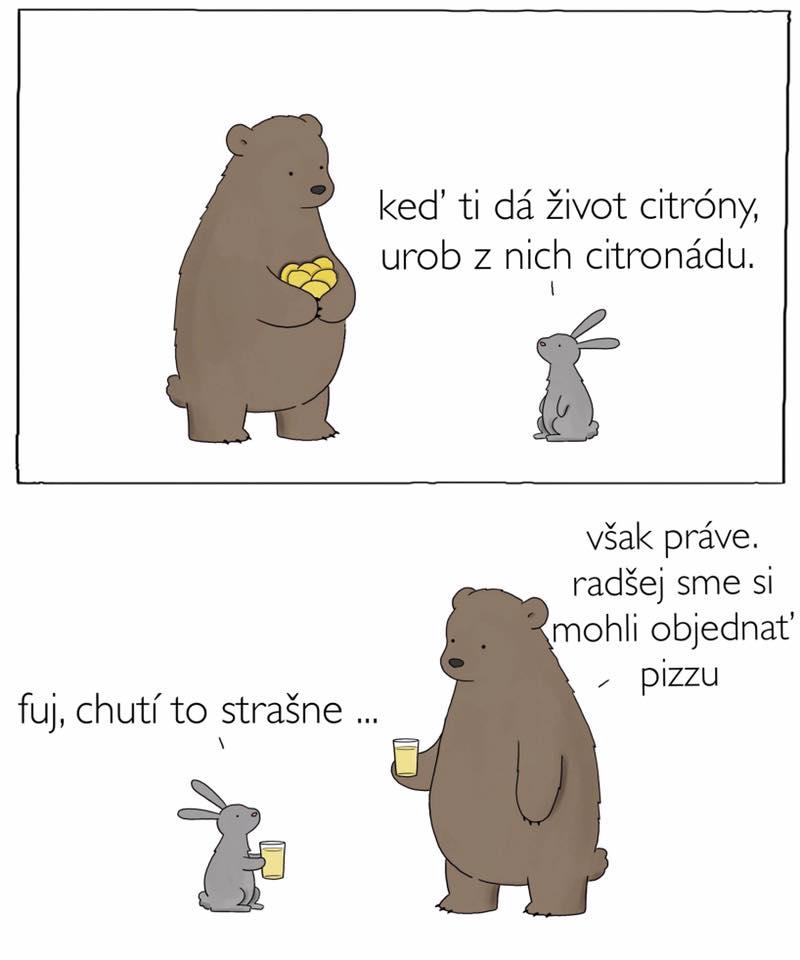 Medveď a zajko