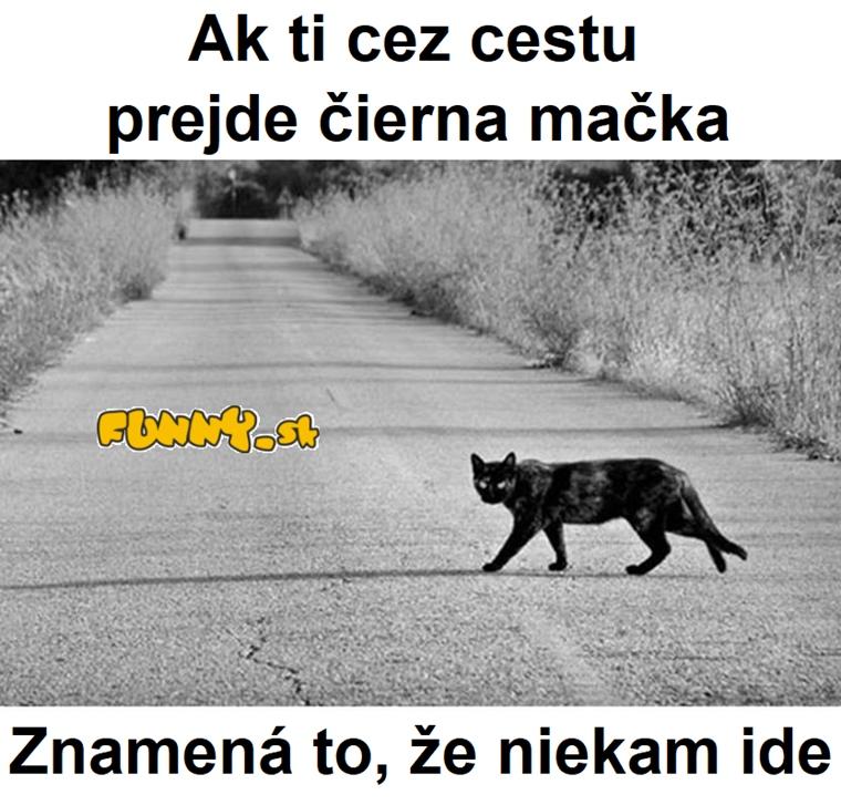 Čierna mačka