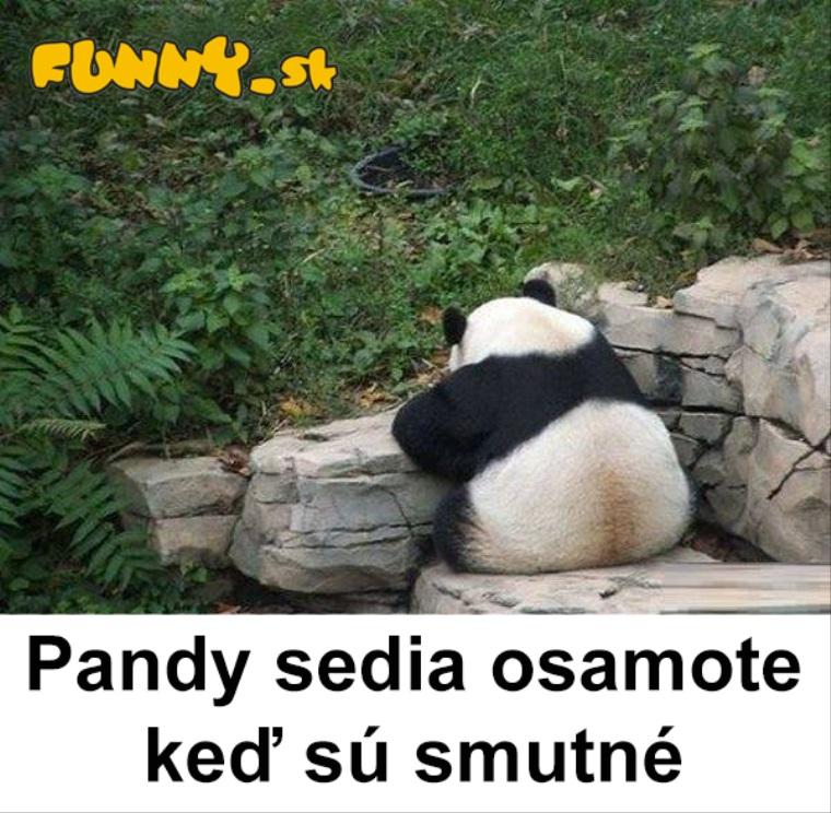 Smutné pandy