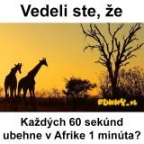 Zaujímavosť z Afriky