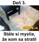 Nájdete strateného psa?