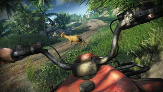 Zábery z FarCry 3